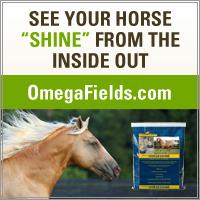 omega fields banner