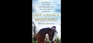LASTCHANCEMUSTANG_coverimage